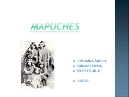 Problema mapuche en la actualidad -