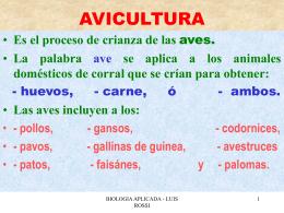 AVICULTURA - UPCH - Universidad Peruana Cayetano