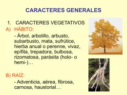 CARACTERES GENERALES - Universidad Autónoma de