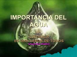 IMPORTANCIA DEL AGUA