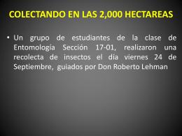 COLECTANDO EN LAS 2000 HECTAREAS
