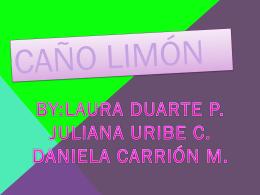 Caño limón