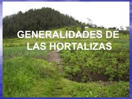 GENERALIDADES DE LAS HORTALIZAS