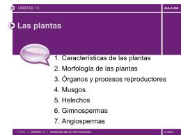 Presentación Plantilla Telefónica