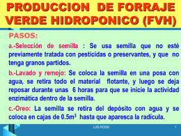 HIDROPONIA - UPCH - Universidad Peruana Cayetano