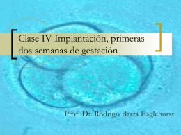 Clase IV Implantación, primeras dos semanas de