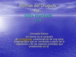 Biomas del Uruguay Erika Marchetti Costa fluvial o