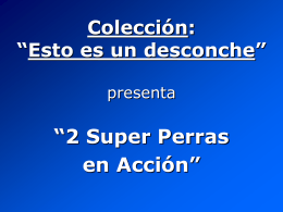 2 Super Perras en Acción