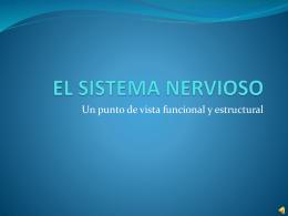 EL SISTEMA NERVIOSO - Psicología para el CCH