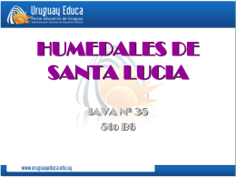 HUMEDALES DE SANTA LUCIA