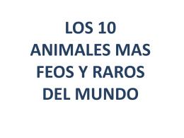 Animales Raros www.albelda.info