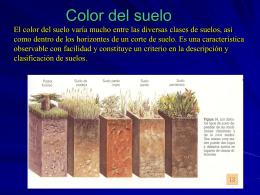 Color del suelo El color del suelo varía mucho