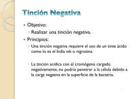 Tinción Negativa