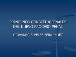 PRINCIPIOS CONSTITUCIONALES DEL NUEVO PROCESO