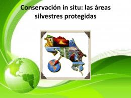 Conservación in situ: las áreas silvestres