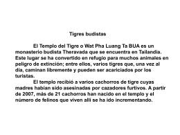 Tigres budistas El Templo del Tigre o Wat Pha