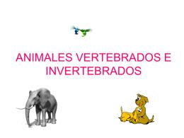 ANIMALES VERTEBRADOS E INVERTEBRADOS