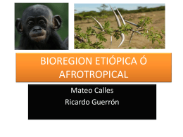 BIOREGION ETIÓPICA Ó AFROTROPICAL