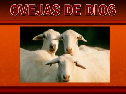 Diapositiva 1 - Congregación Cristiana Rocafiel -
