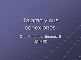 Tálamo y sus conecciones