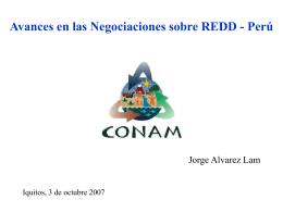 Avances en las Negociaciones sobre REDD - Perú -