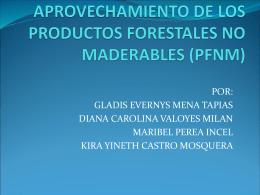 APROVECHAMIENTO DE LOS PRODUCTOS FORESTALES NO