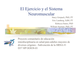 Exercise and the Neuromuscular System