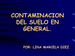 CONTAMINACION DEL SUELO EN GENERAL.