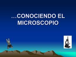 CONOCIENDO EL MICROSCOPIO