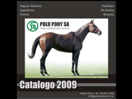 Primavera (2) - Polo Pony SA