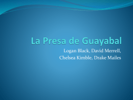 La Presa de Guayabal