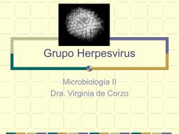 Grupo Herpesvirus - Avindustrias Guatemala