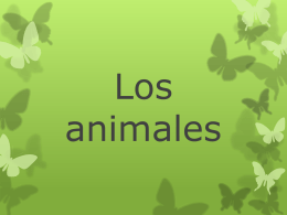 Los animales - Primary Resources
