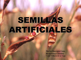 SEMILLAS ARTIFICIALES