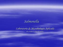 Salmonella Isolation - Universidad de Puerto Rico Humacao