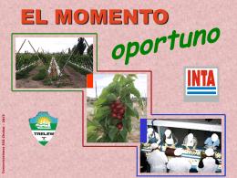 MOMENTO OPORTUNO Variedad Destino El momento …