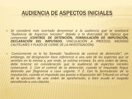 Audiencia de Aspectos Iniciales