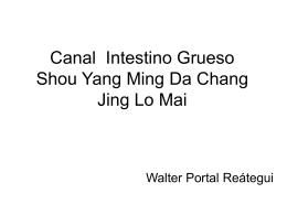 Canal Intestino Grueso Shou Yang Ming Da Chang Jing Lo …