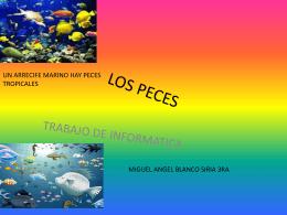 Los peces - AMPA DE L'ESCOLA POMPEU FABRA