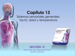 Raff_Fisiologia_FIGURAS_c13_TACTO_DOLOR_TEMP