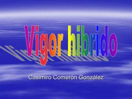 Vigor hibrido - Casimiro Comeron Gonzalez