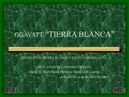 """GGAVATT """"TIERRA BLANCA"""""""