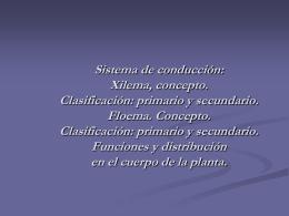 TEJIDOS VASCULARES: XILEMA Y FLOEMA