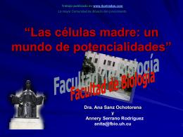 Las celulas madre: un mundo de potencialidades