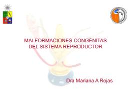 Diapositiva 1 - Servidor de Docencia