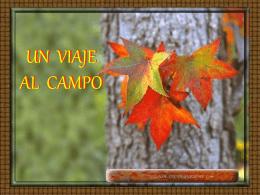UN VIAJE AL CAMPO - Web de la Iglesia de Cristo en Sevilla