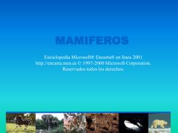 MAMIFEROS