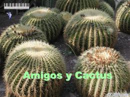 Amigos y cactus.