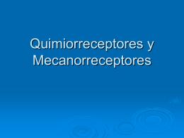 Quimioreceptores