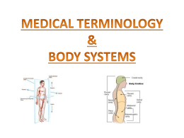 MEDICAL TERMINOLOGY & BODY SYSTEMS